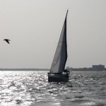 New Horizon sailing charters from Charleston Sail